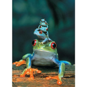 Jigsaw Puzzle 1000 Pieces 49cm x 70cm -Red-Eyed Tree Frog