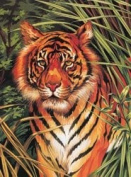 "Junior Paint By Number Kits 23cm X12""-Tiger On The Prowl"