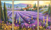 Schipper Lavender Fields Painting by Numbers