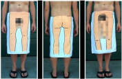 The Dick Towel