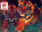 Baby Tiger Cubs 500 Piece Jigsaw Puzzle by Hoyle Products