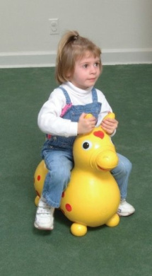 Rody Toy Horse