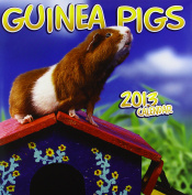 Guinea Pigs Wall: 2013