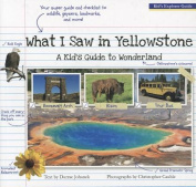 What I Saw in Yellowstone