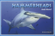 Hammerheads and More!
