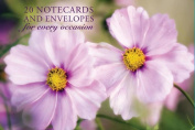Card Box of 20 Notecards and Envelopes