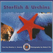 Starfish & Urchins Paperback