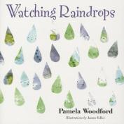 Watching Raindrops