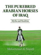 The Purebred Arabian Horses of Iraq