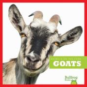 Goats (Animals on the Farm