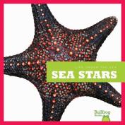 Life Under the Sea: Sea Stars