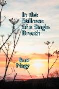 In the Stillness of a Single Breath
