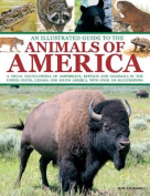 An Illustrated Guide to the Animals of America