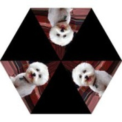 LittleGifts Umbrella Bichon Frise