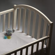 Bedbug Crib Mattress Encasement prevents Bed Bugs and Allergy Triggers
