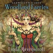 Llewellyn's 2014 Woodland Faeries Calendar