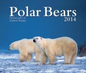 Polar Bears 2014 Calendar