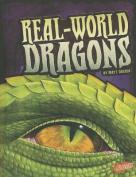 Real-World Dragons (Blazers