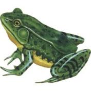 Instant Murals IMD-424 Wild Life Animals Wall Sticker Mural Frog