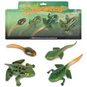 Evolving Tadpoles-Tadpole to Frog Transformation