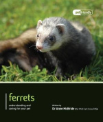 Ferrets - Pet Friendly