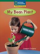 My Bean Plant