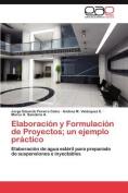 Elaboracion y Formulacion de Proyectos; Un Ejemplo Practico [Spanish]