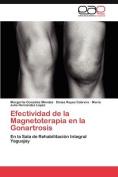 Efectividad de La Magnetoterapia En La Gonartrosis [Spanish]