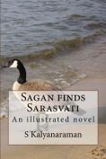 Sagan Finds Sarasvati