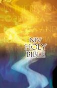 NIV Outreach Bible