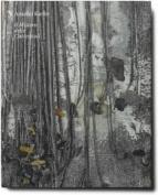 Anselm Kiefer - Il Mistero Delle Cattedrali