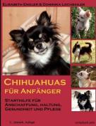 Chihuahuas Fur Anf Nger