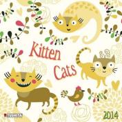 Kitten Cats 2014