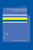The Protection of Property Rights in Comparative Perspective