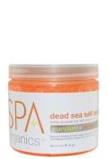 BCL Spa Organics Mandarin and Mango Dead Sea Salt Soak