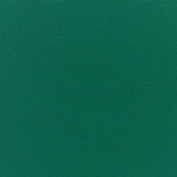 Vinyl Bath Pillow Green