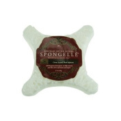 Spongelle Body Wash Infused Buffer - 5 Washes - Citrus Accord - Musk