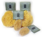 River Soap Co Natural Facial Sea Sponge Sustainably Harvested
