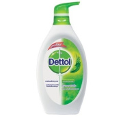 Dettol Shower Gel, Herbal With Moisturiser Alovera 600 G Skin.