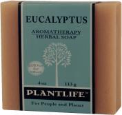 Eucalyptus Aromatherapy Herbal Soap - 120ml