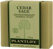 Cedar Sage 100% Pure & Natural Aromatherapy Herbal Soap- 120ml
