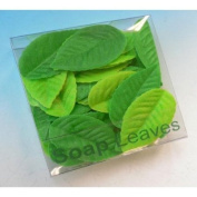 Peppermint Scented Soap Leaves, Poplar