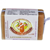 Tierra Mia Organics, Raw Goat Milk Skin Therapy, Body Soap Bar, Lavender Vanilla, 120ml