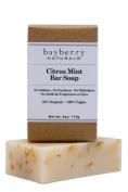 Citrus Mint Bar Soap