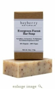 Evergreen Forest Bar Soap