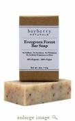 Evergreen Forest Bar Soap