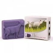 Billie Goat Lavender Goat Soap 100g