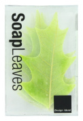 Design Ideas Soap Leaves, Pin Oak, Green