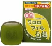 Chlorophyll Soap Facsimile Edition