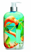 Fruits & Passion Imagine Hand Soap, Mango Evasion, 500ml Pump Bottle